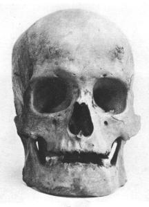 easter-island-skull-front