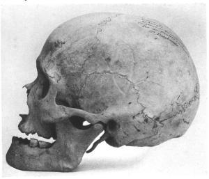 easter-island-skull-side