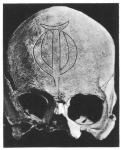 miru-skull-3