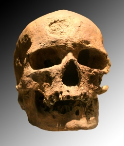 Eurymorphic Cro-Magnon 1, Upper Paleolithic France