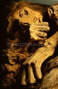 inca-mummy-3-1