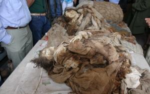 inca-mummy-4
