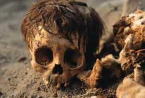 inca-skull